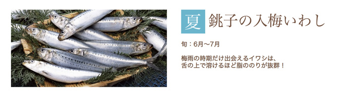 銚子/入梅イワシが旬!夏の名産/釣り